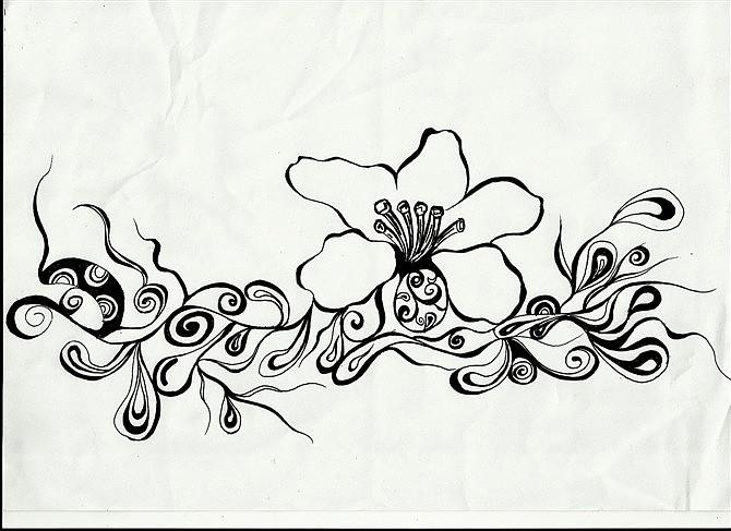手绘黑白画 花 还是爱花