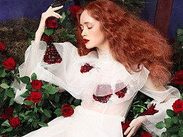 兰奕的纱,小玫瑰