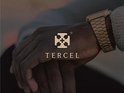 TERCEL by HXD鸿