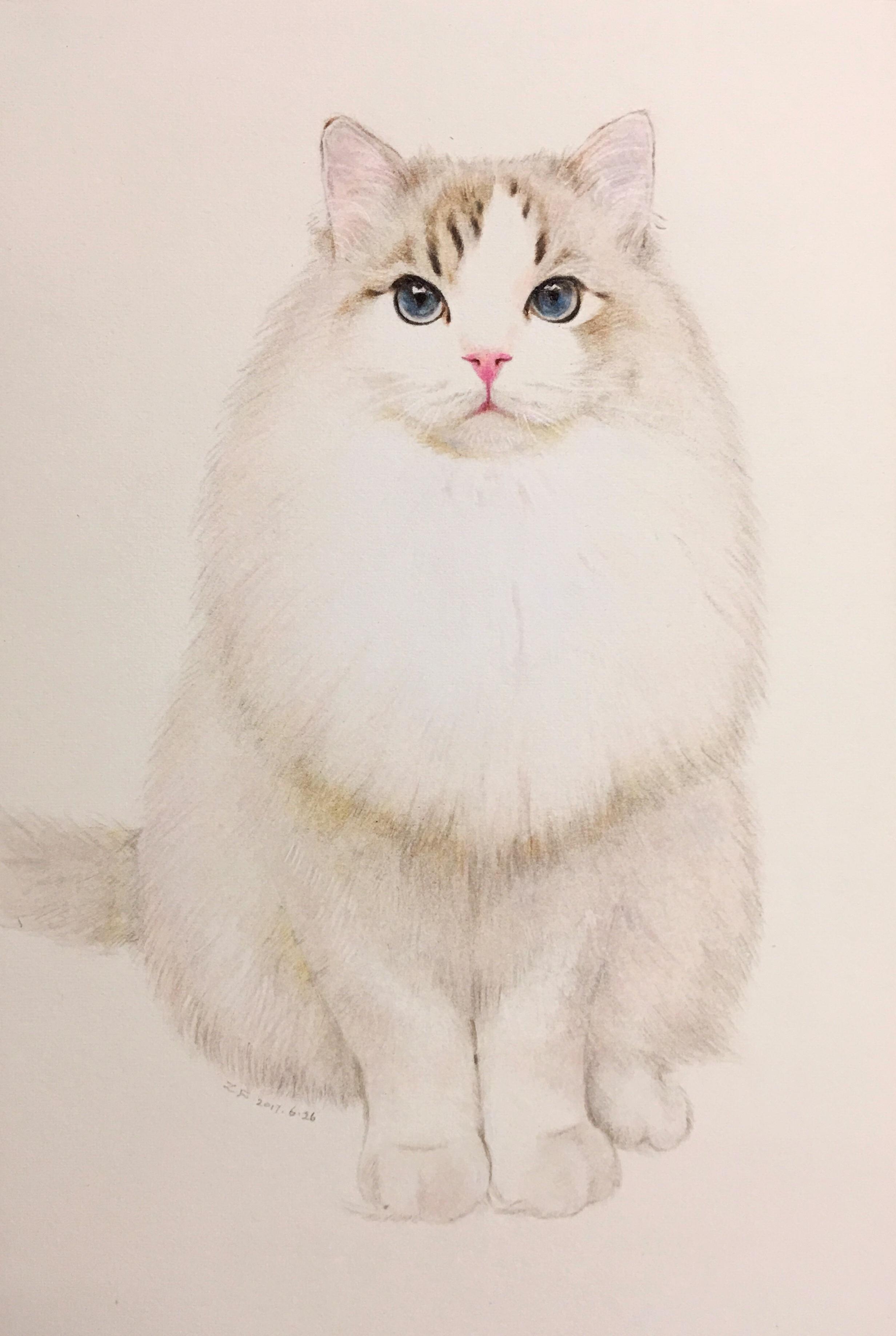 动物装饰画手绘彩铅