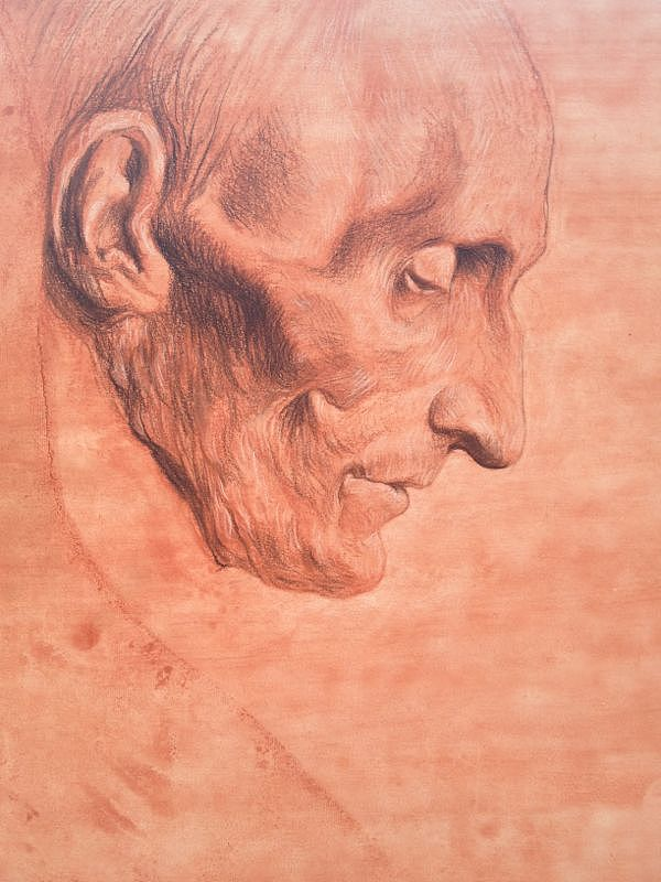 2013年4月8日  临摹  门采尔  素描稿 16开纸上 素描干性材料 碳笔 色