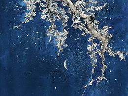 花开花落,云卷云舒。——插画手绘练习