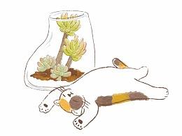 明信片 - 猫の日常