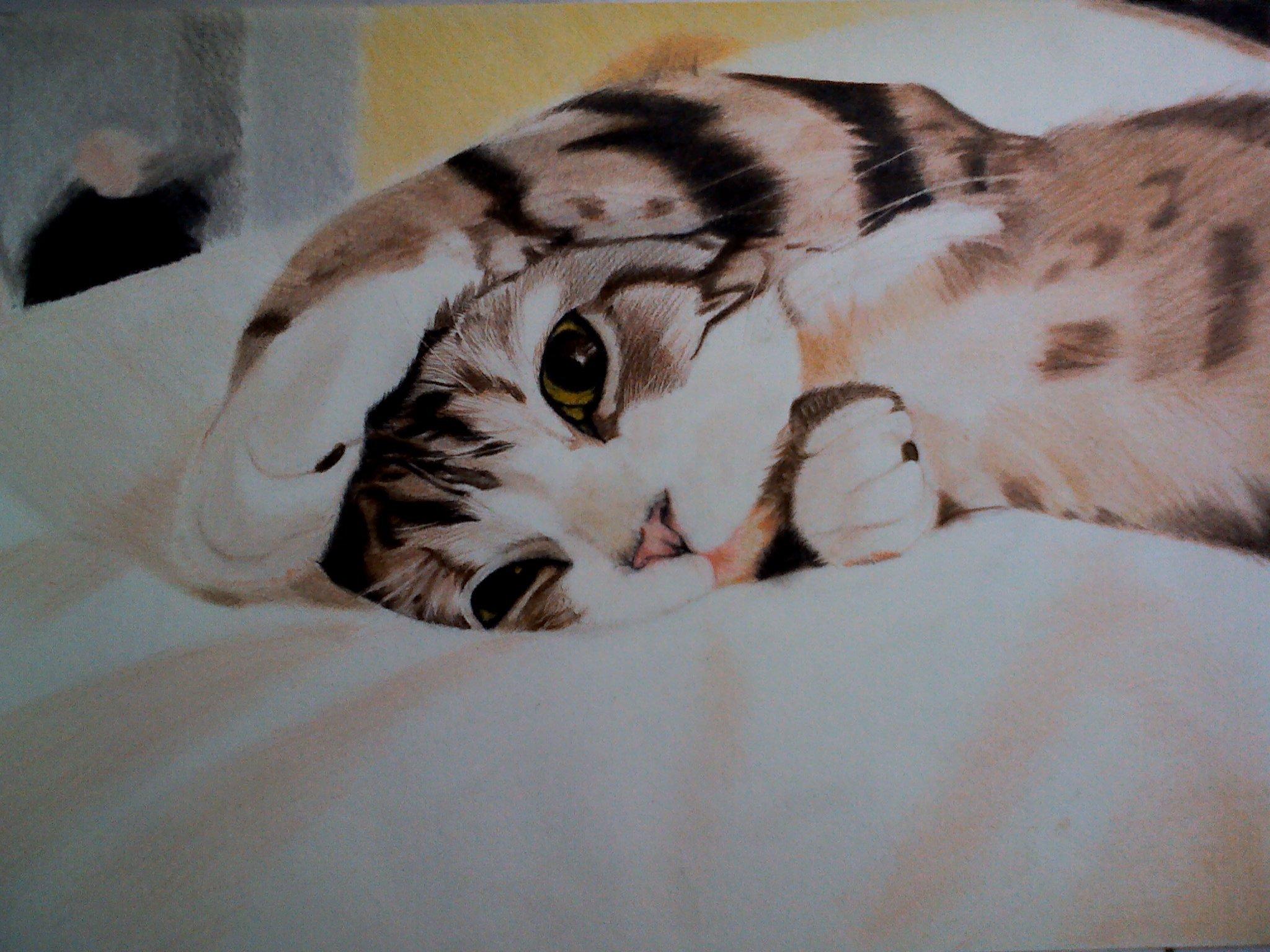彩铅 纯手绘