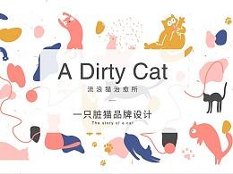 A Dirty cat | 流浪猫治愈所品牌提案