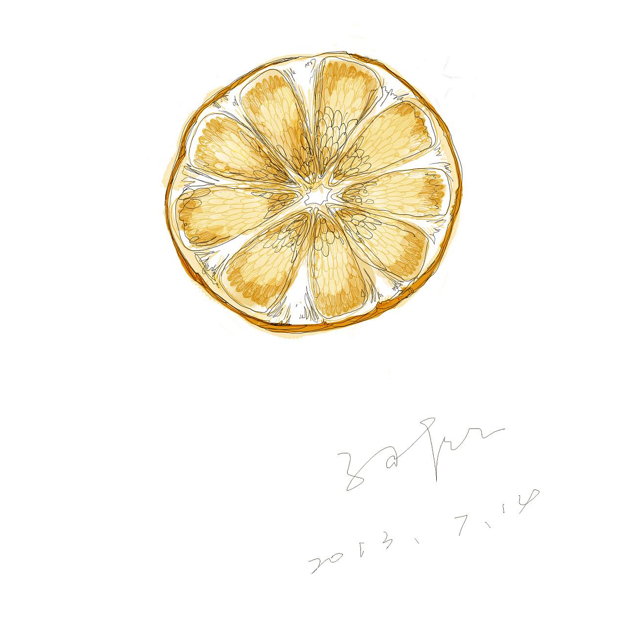 橙子,手绘风格,随笔插画.