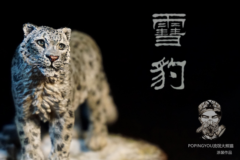 雪豹是我最喜欢的的猫科动物,原因可能是这种大猫的性格很吸引人,孤