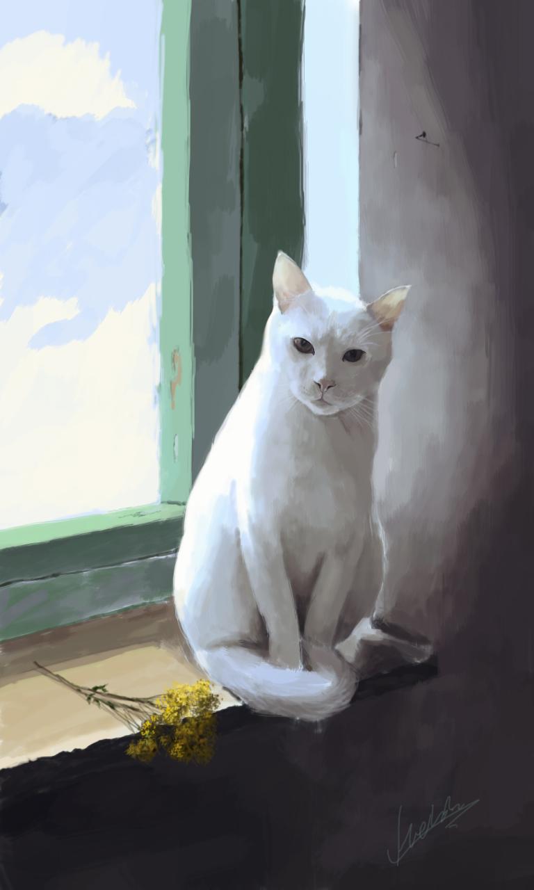 猫咪手绘步骤