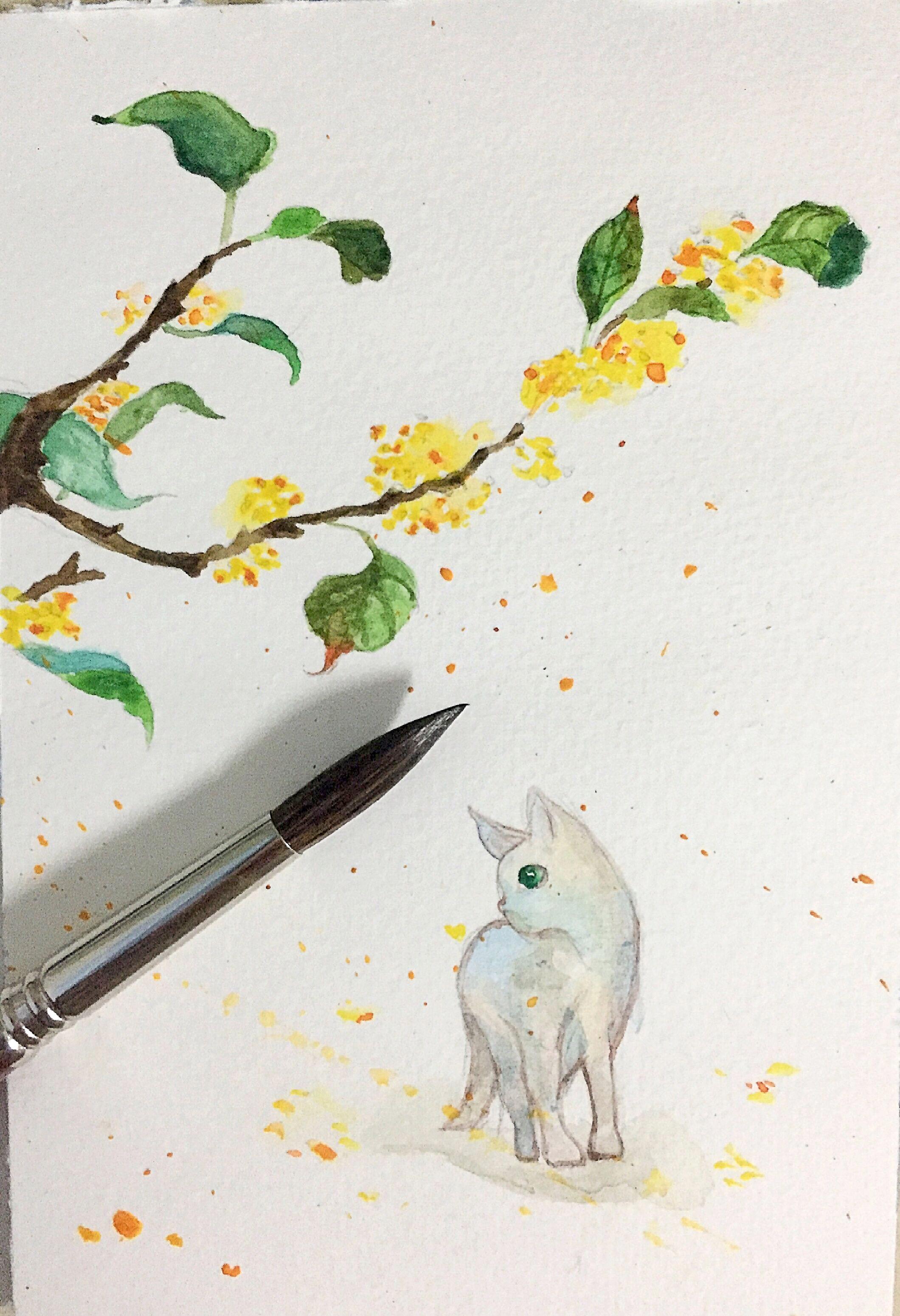 水彩手绘练习-桂香