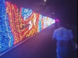墙体灯饰画 专业厂定制灯光画图案 设计制作安装一条龙
