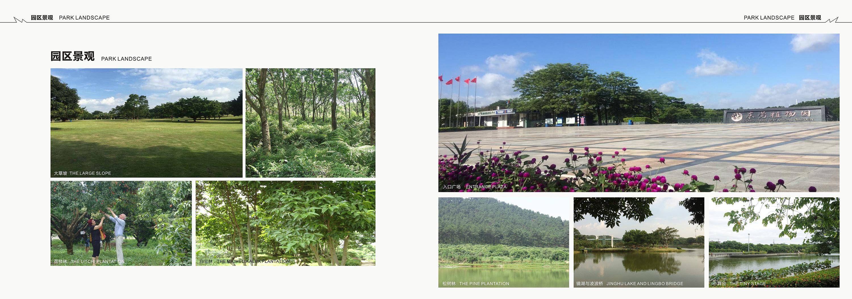 东莞植物园画册