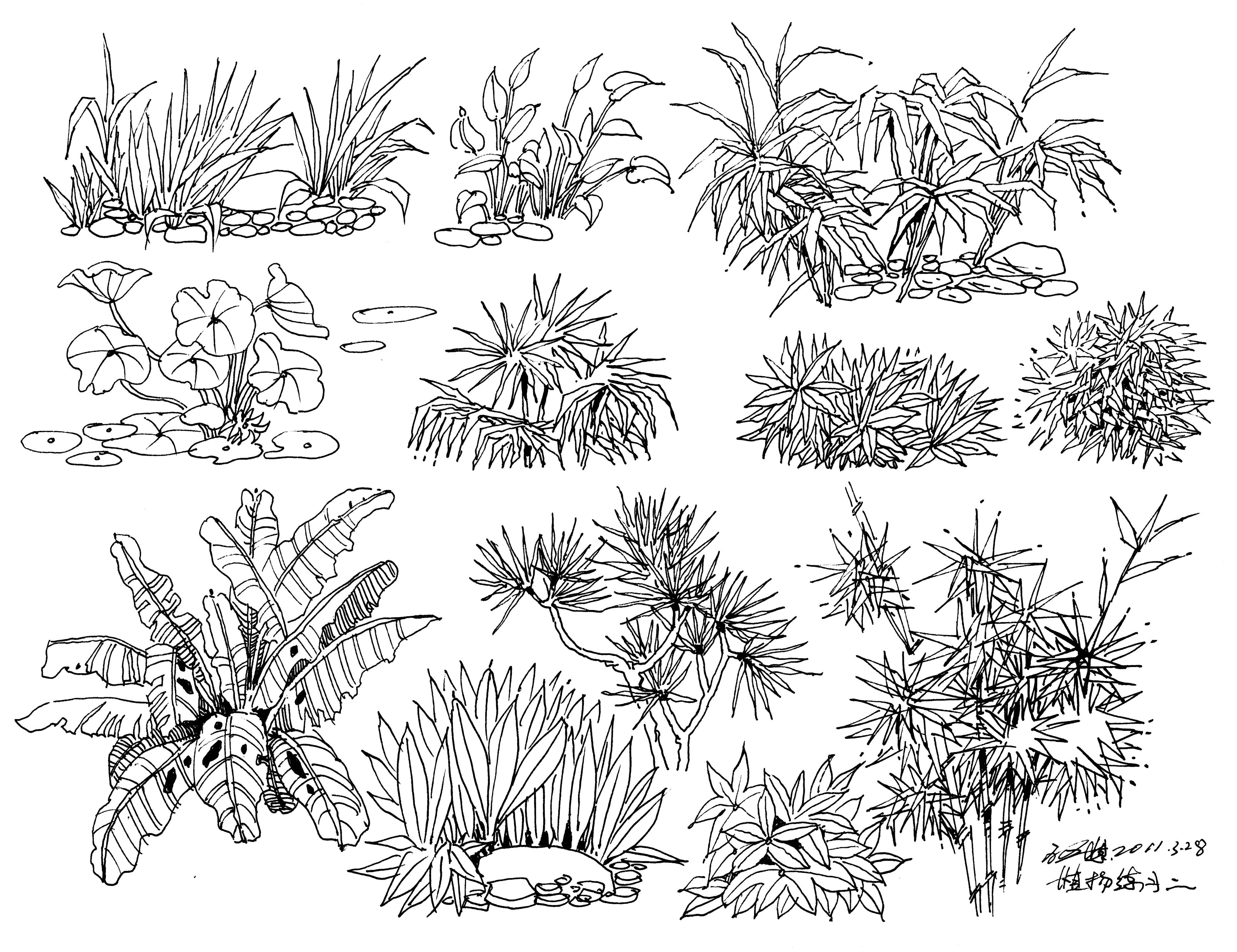 匠人营国|景观手绘植物,水景,石头,人物,交通工具,以及平面造型手绘练