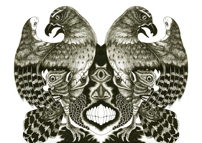 手绘《鹰》