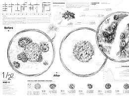 《封城前后》武汉市人口流动研究调查 - 信息图形设计