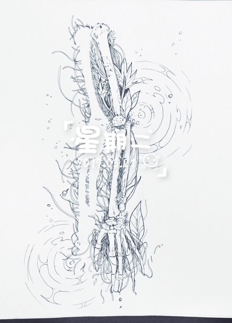 简笔画 手绘 线稿 750_1042 竖版 竖屏