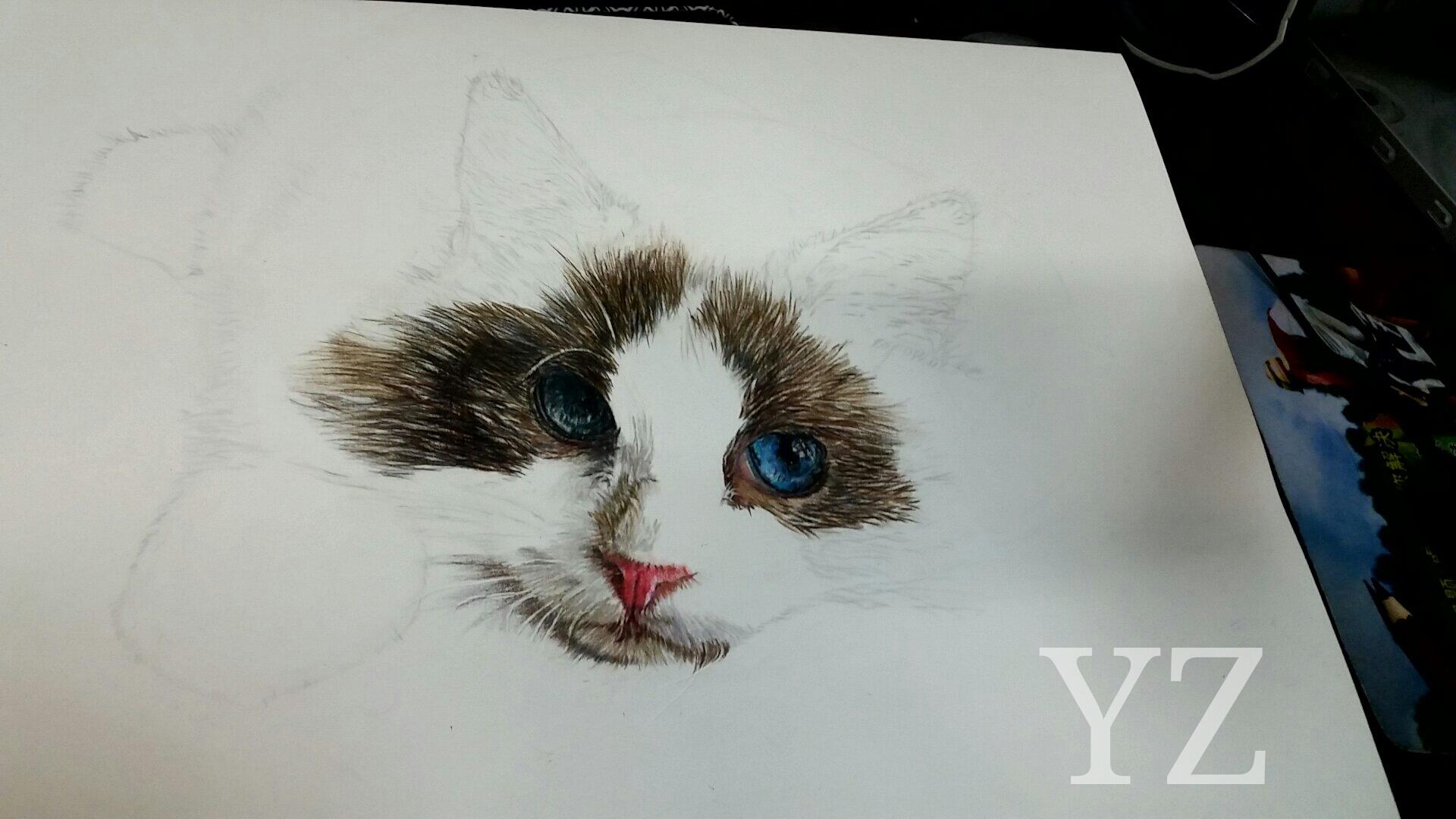 彩铅手绘视频教程
