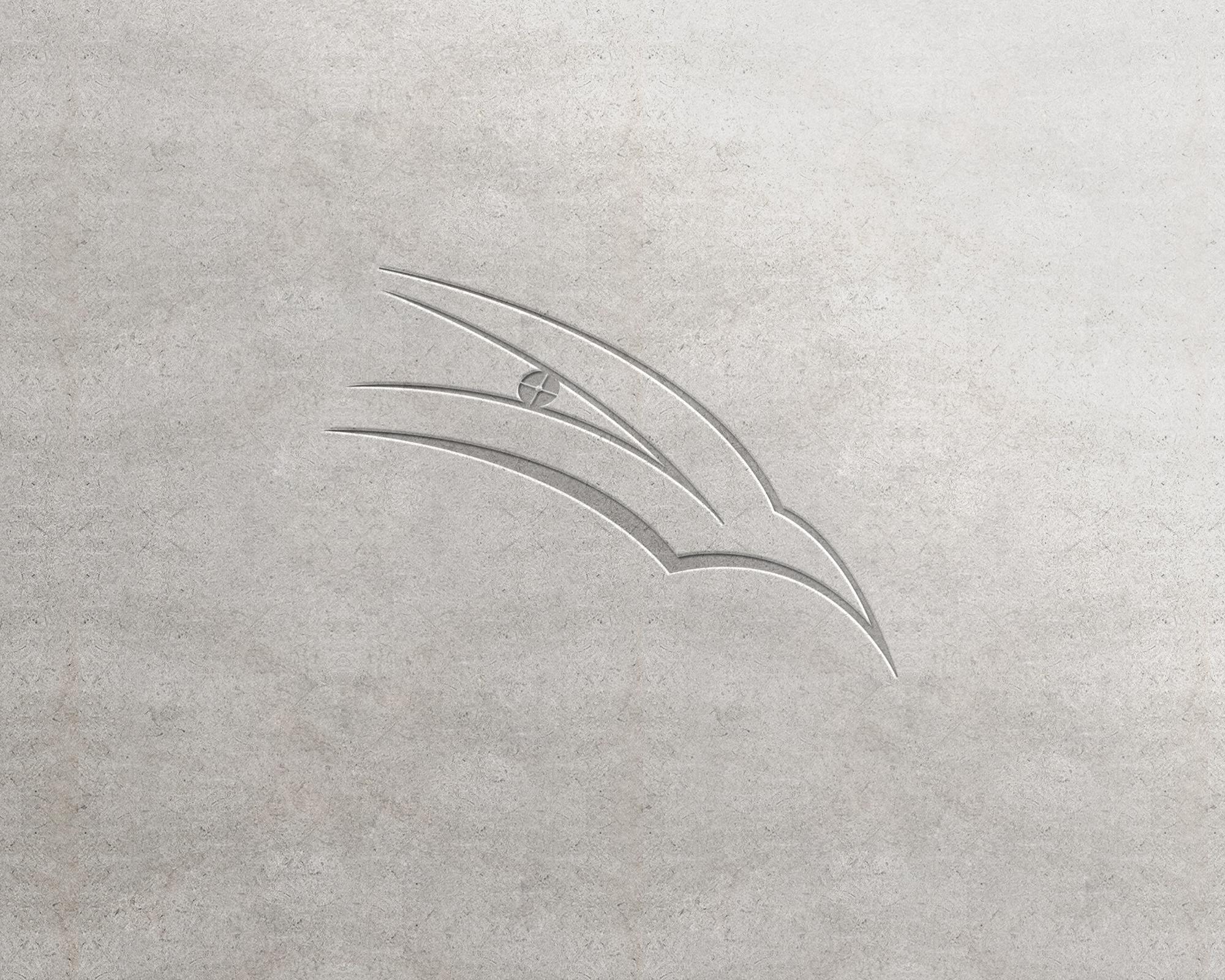 鹰眼logo
