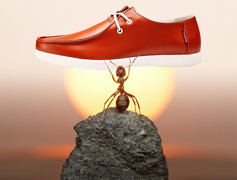 男鞋蚂蚁创意合成图图片