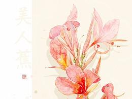 二十四节气花卉(未完待续)