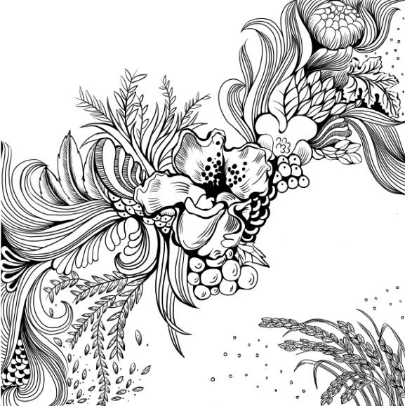 手绘线条图像果实