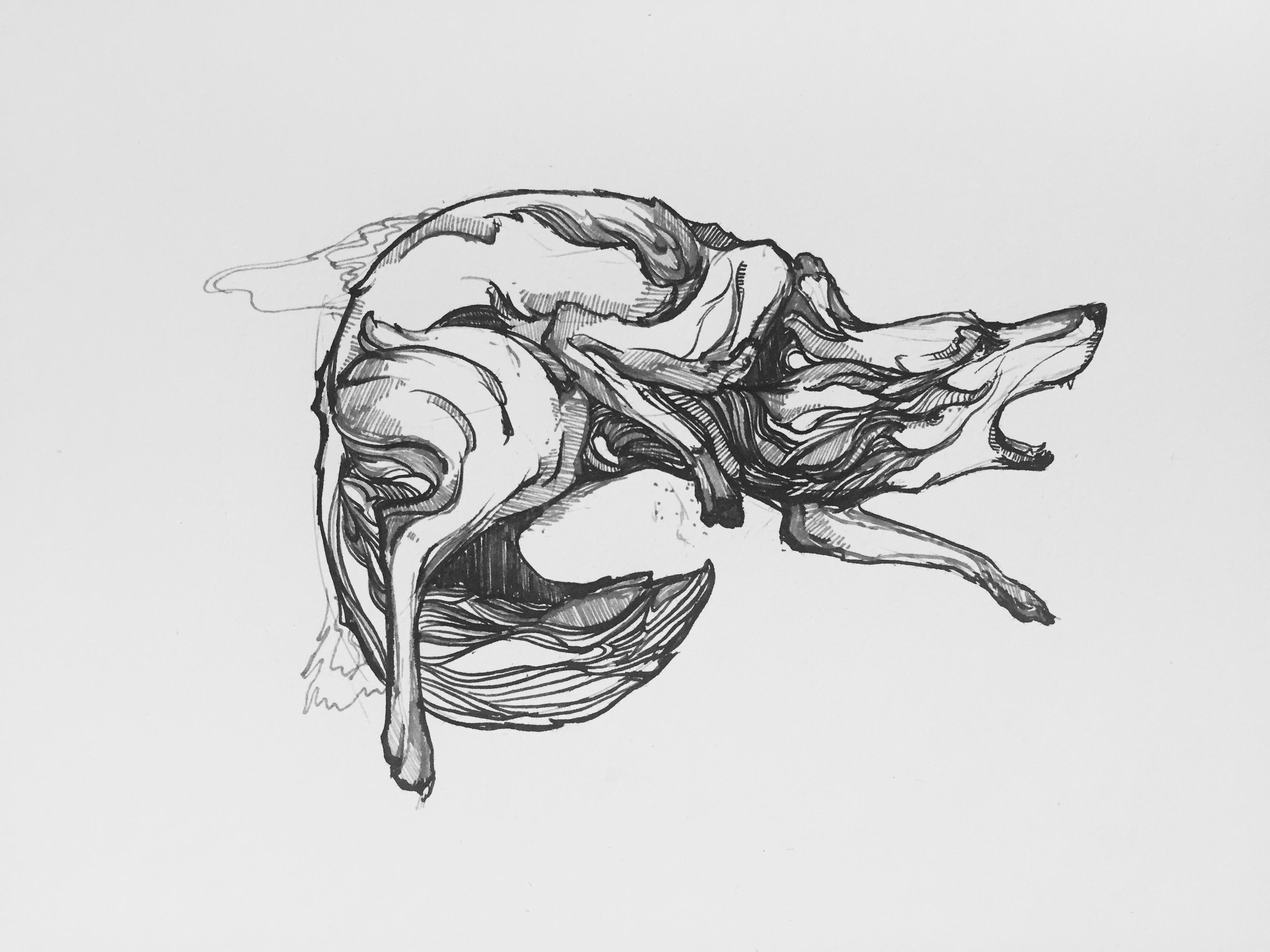 画过动物|纯艺术|钢笔画|frankzou - 原创作品 - 站酷