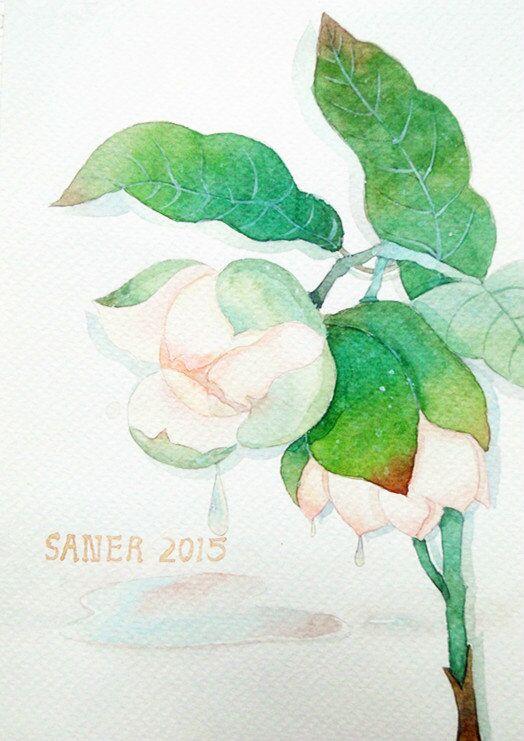 水彩 手绘 原创 插画 文艺清新|其他绘画|插画|潘璕