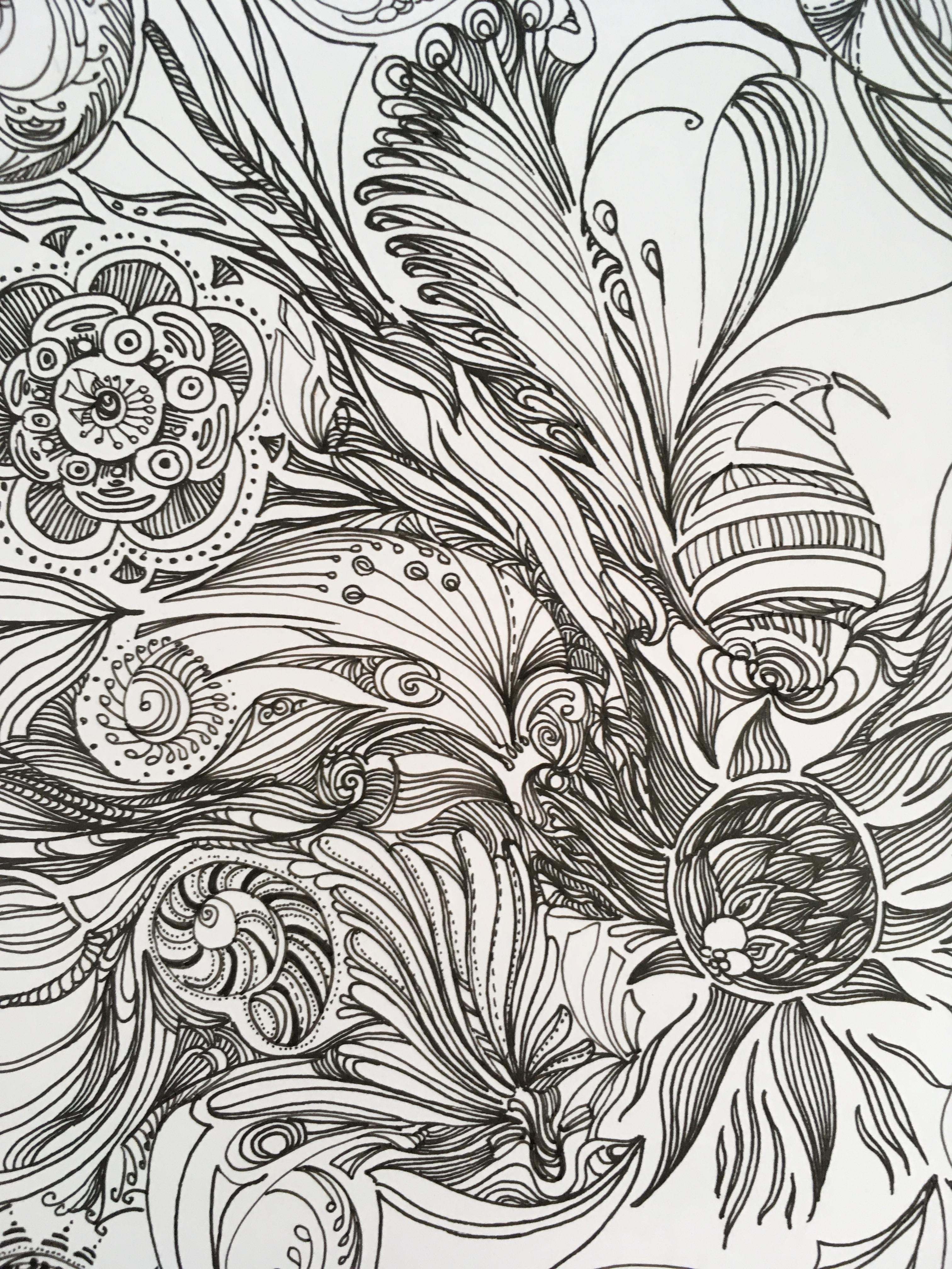 原创 手绘 黑白插画 植物 动物 水草
