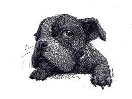 AMUMUS-小宠物(圆珠笔)