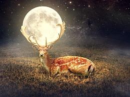 图像合成——原野小鹿