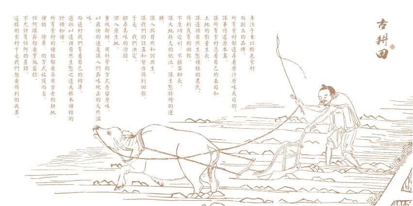 仁之稻 大米包装设计