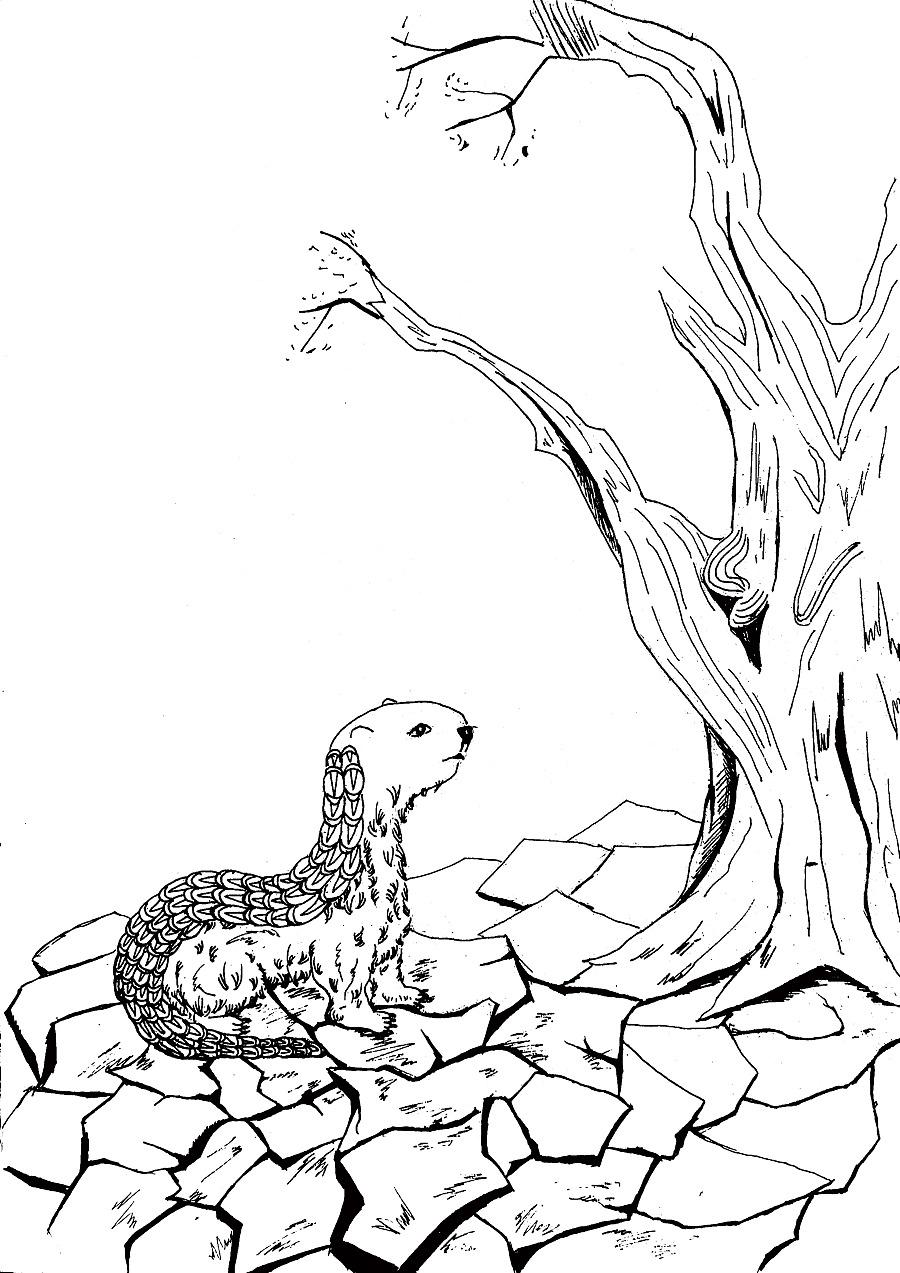 这一带有一种兽,它的形状像发怒的狗,身上有磷,毛像猪鬣.