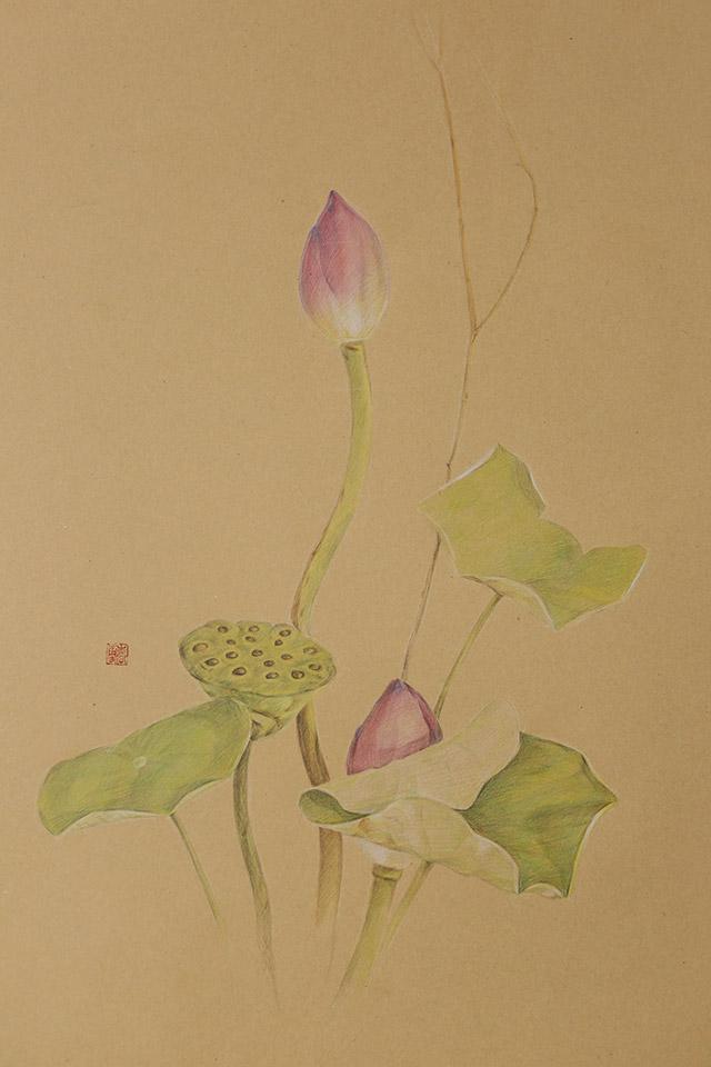 近期手绘练习:彩铅 水彩