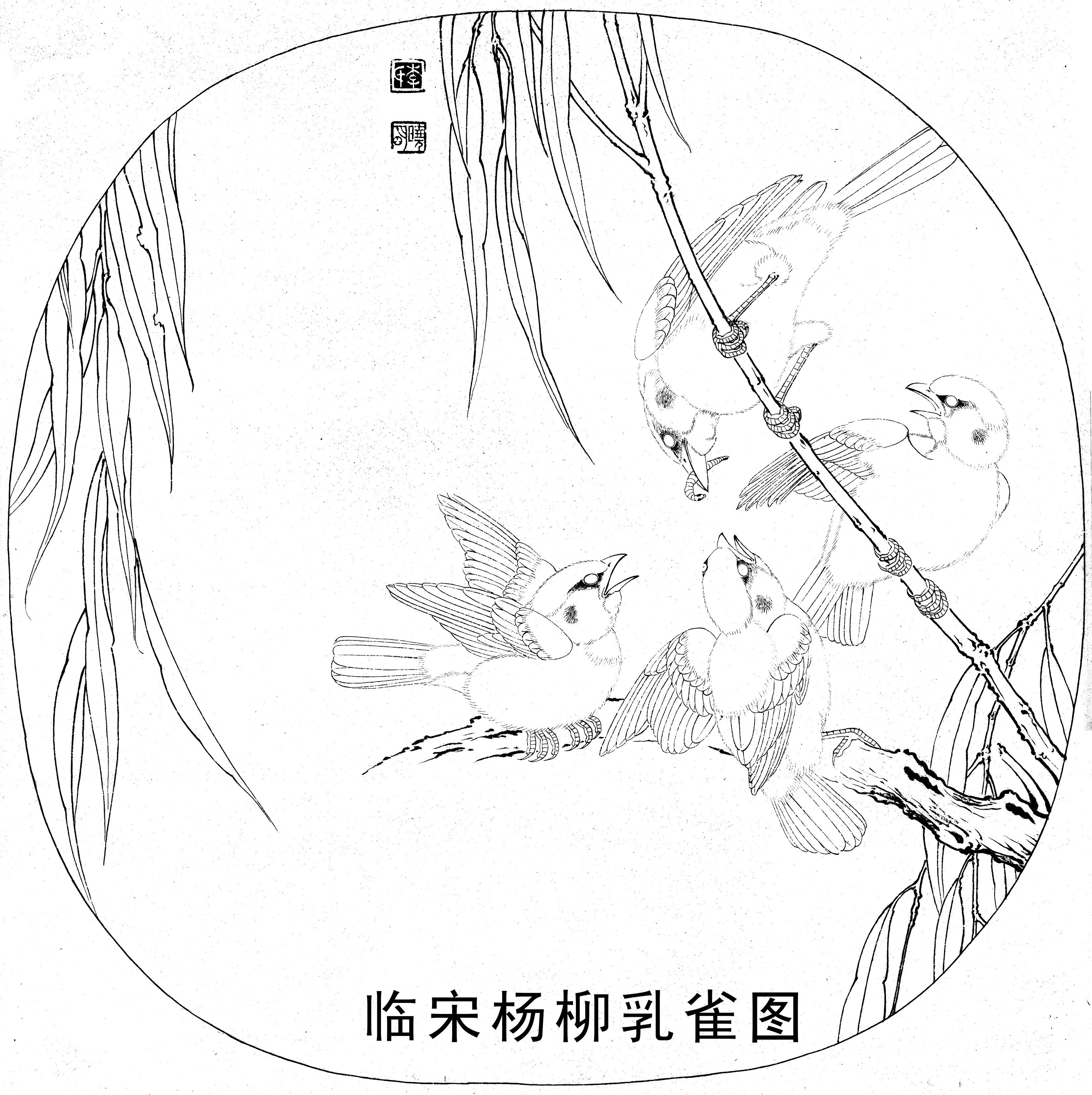 临摹 杨柳乳雀图 工笔作画步骤教程