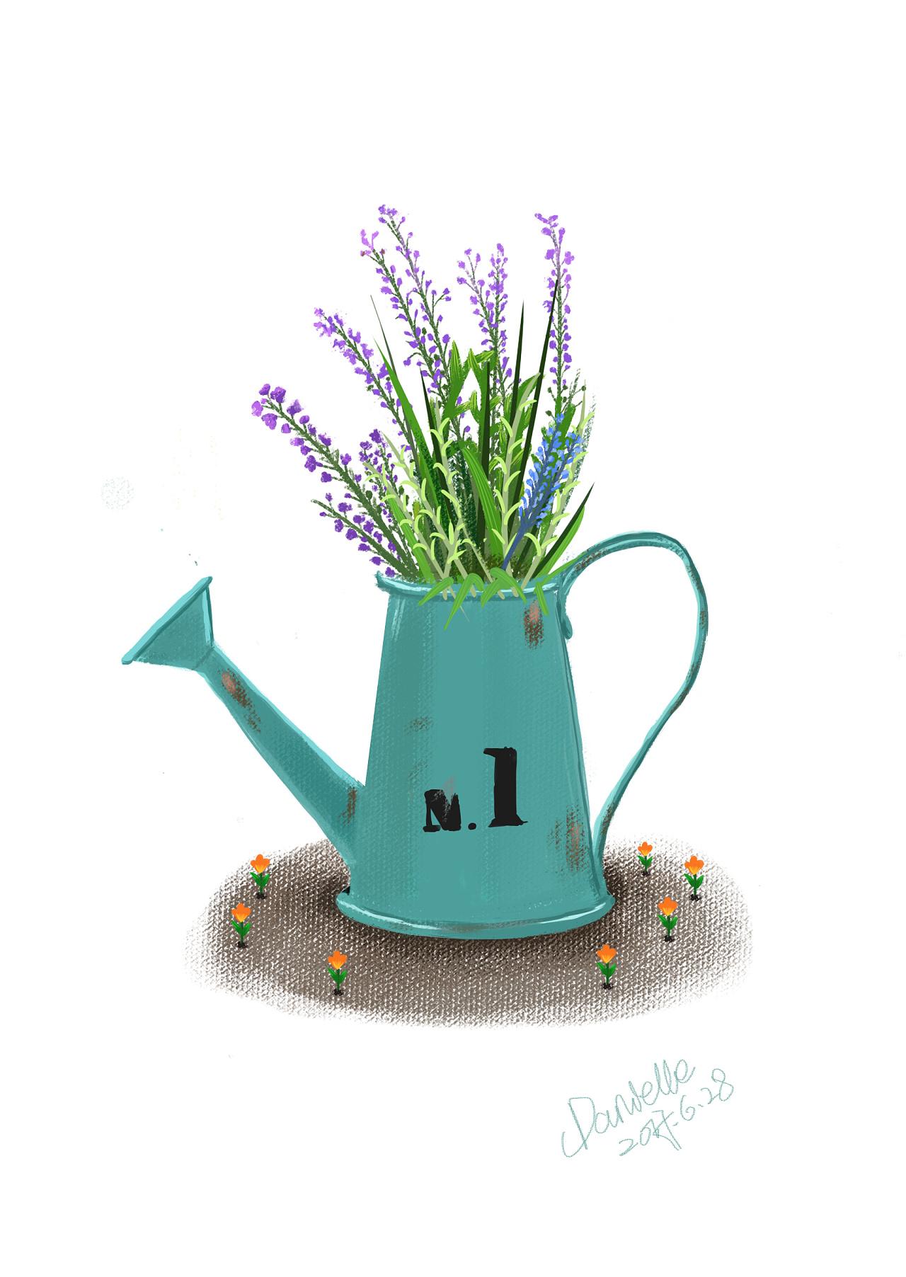 插画—手绘—植物