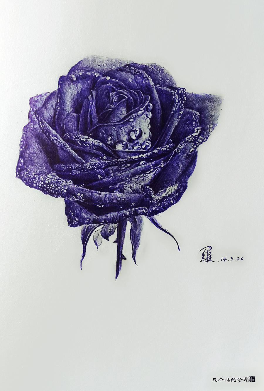 蓝色妖姬圆珠笔手绘|其他大厅|插画|绘画林-原串串香店凡尔设计图图片