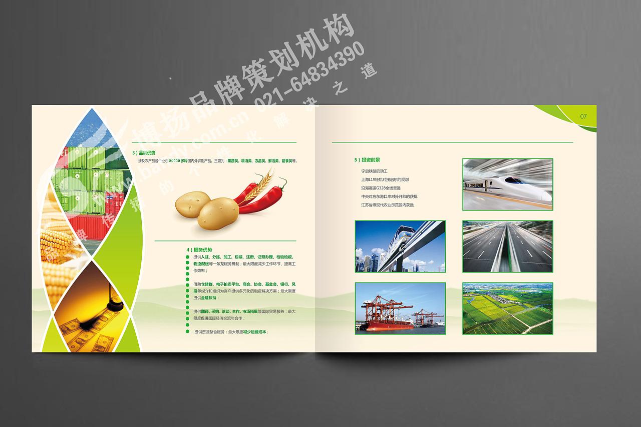 设计|企业形象画册设计|农产品画册|工业产品画册|上海画册设计公司图片