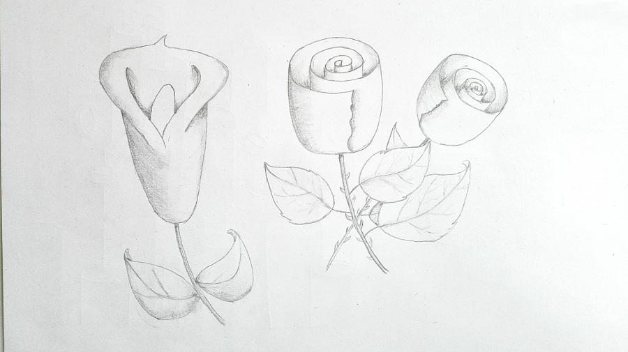 手绘作品|插画习作|插画|我是奋斗的小鱼 - 原创设计