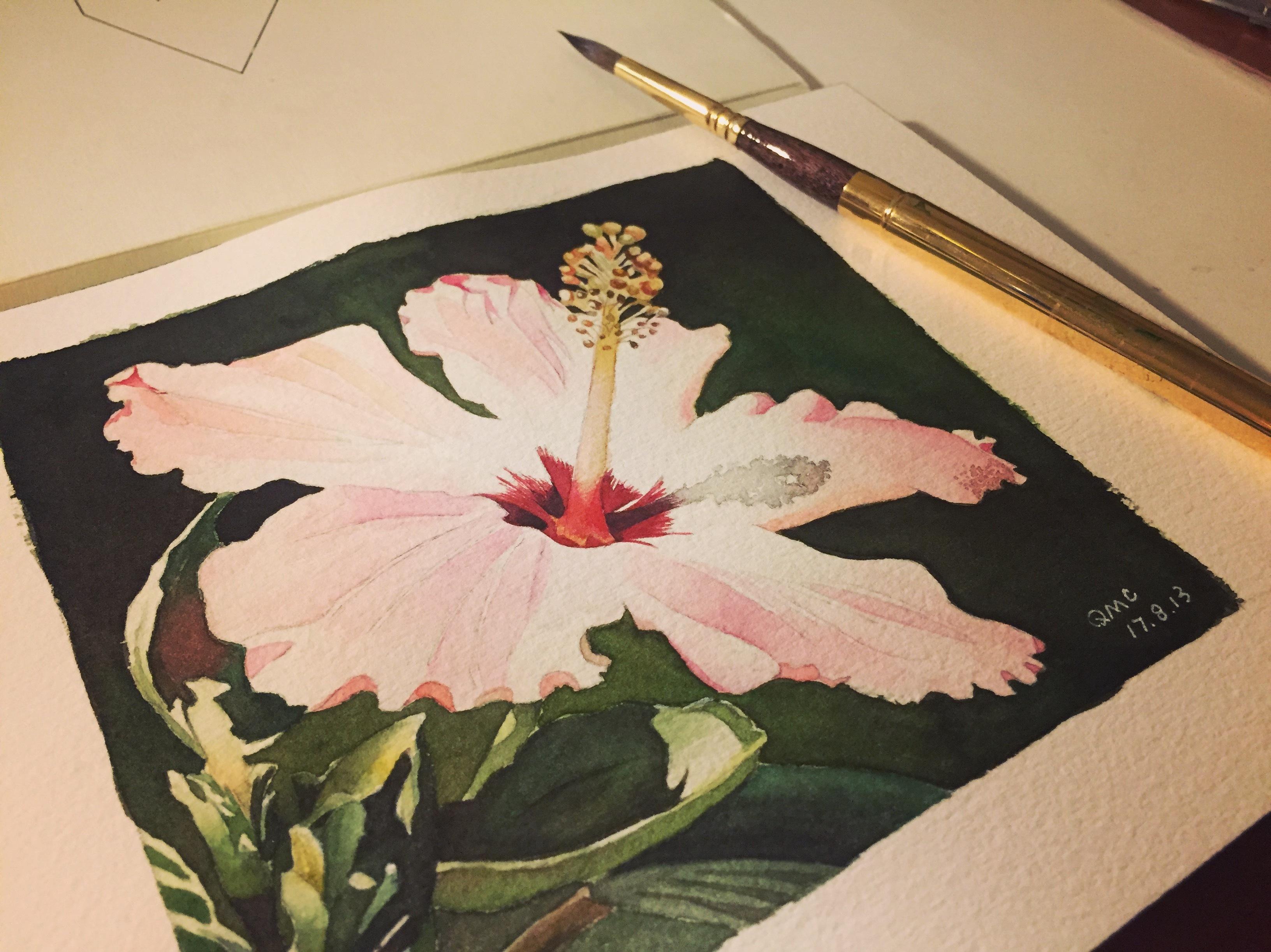 水彩手绘扶桑花