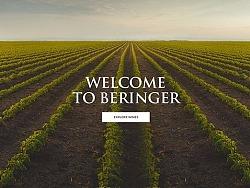 Beringer网站Redesign#