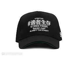 "STRETAG®""STREETWISE适者生存2018""弯檐棒球帽"