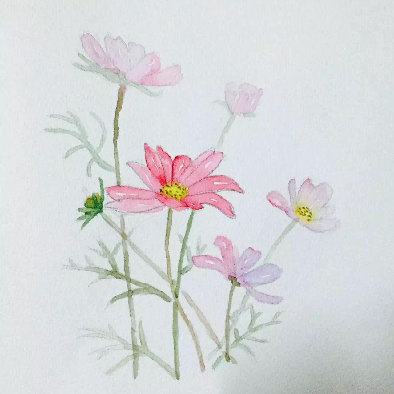 彩色铅笔手绘临摹