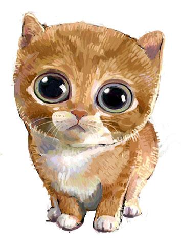 手绘插画-猫咪|绘画习作|插画|mianbao121