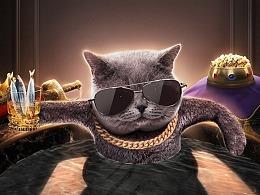 MOJO猫粮详情页视觉策划