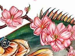桃花流水臭鳜鱼 插画创作过程 | 博古绘今