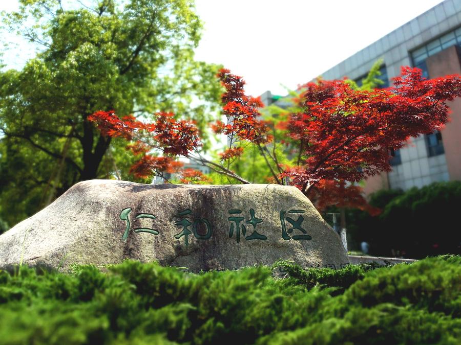 杭州师范大学|课件|设计|雨欲语语-原创摄影作风光晶体二极管图片