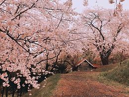 「召唤幸福的北海道」