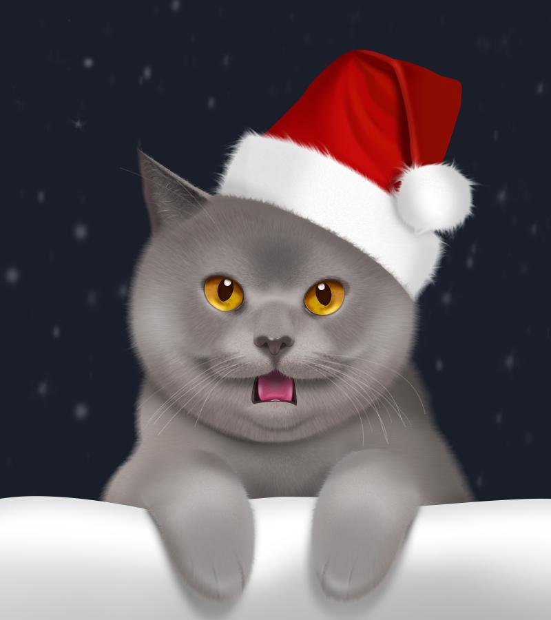 壁纸 动漫 动物 卡通 漫画 猫 猫咪 头像 小猫 桌面 800_900