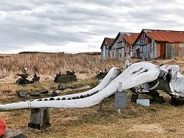 摄影在冰岛