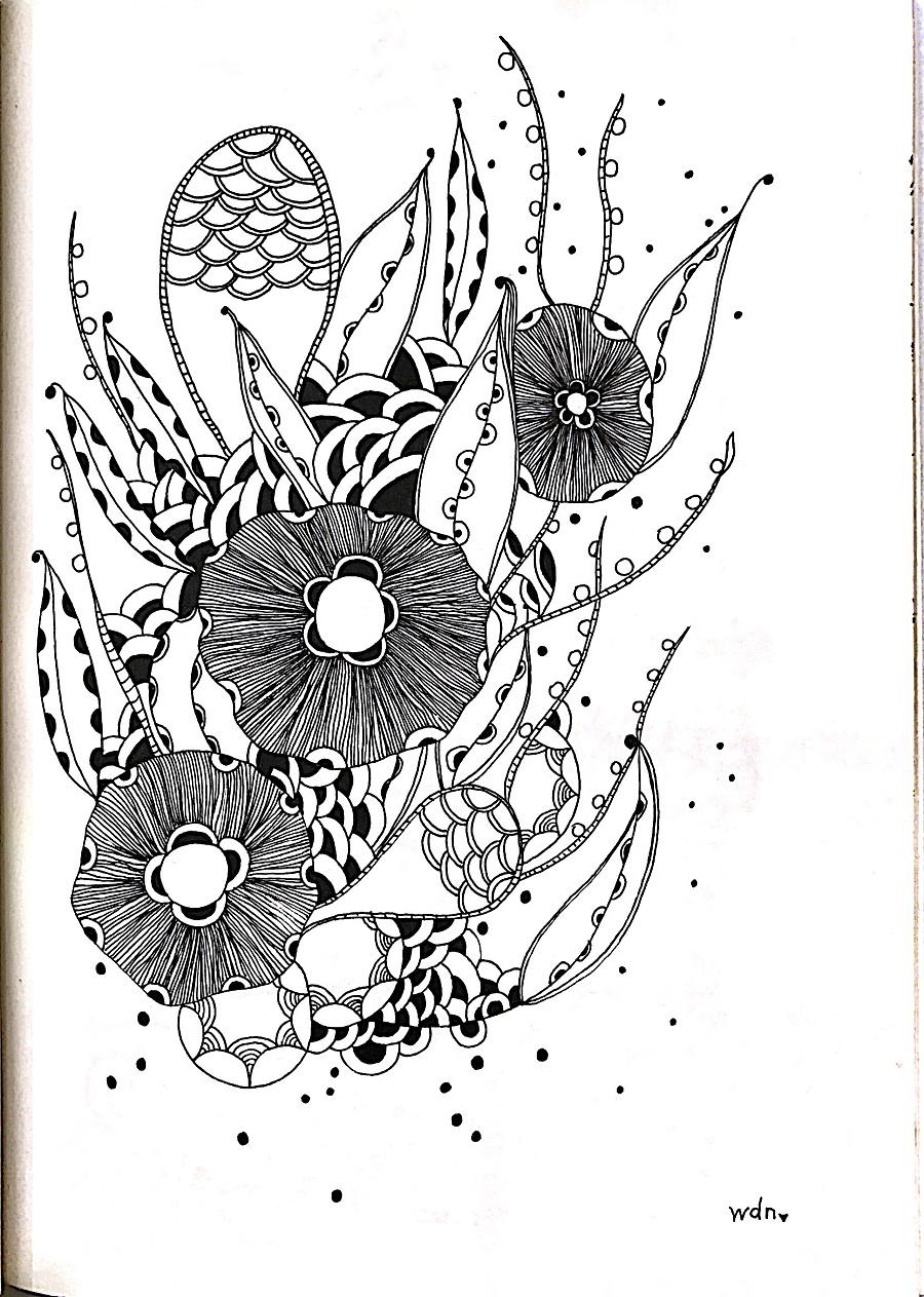 黑白植物线描装饰画_手绘装饰画简笔画-马克笔手绘人物装饰画|简单创意装饰画图片diy ...