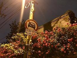 沿途路牌小景(手机拍摄)